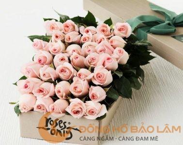 1-hoa-tang-20-thang-10-1510545827853
